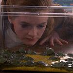 """How's the turtle, Mrs. Stubbs?"""