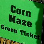 The Halloween Corn Maze!